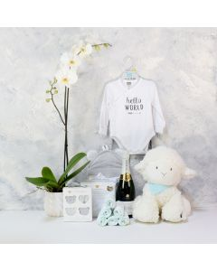 ADORABLE SHEEP BABY GIFT SET WITH CHAMPAGNE, baby girl gift hamper, newborns, new parents